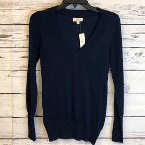 Ambiance navy blue v-neck pullover sweater